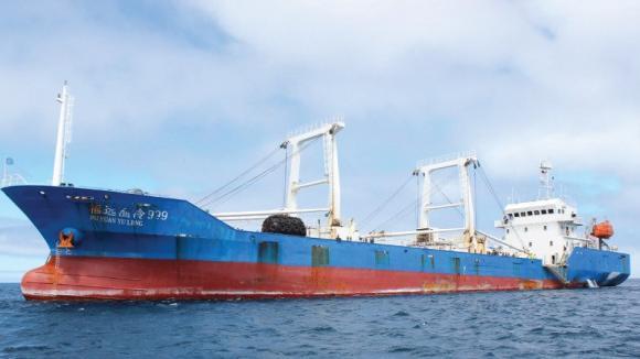 Justicia de Ecuador condena a tripulación de barco chino por tenencia de especies protegidas de Galápagos