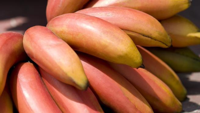 Así es el plátano rojo con sabor a frambuesa originario de Ecuador y cultivado en España
